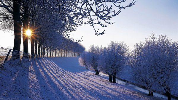 iphone-winter-wallpaper7-600x338