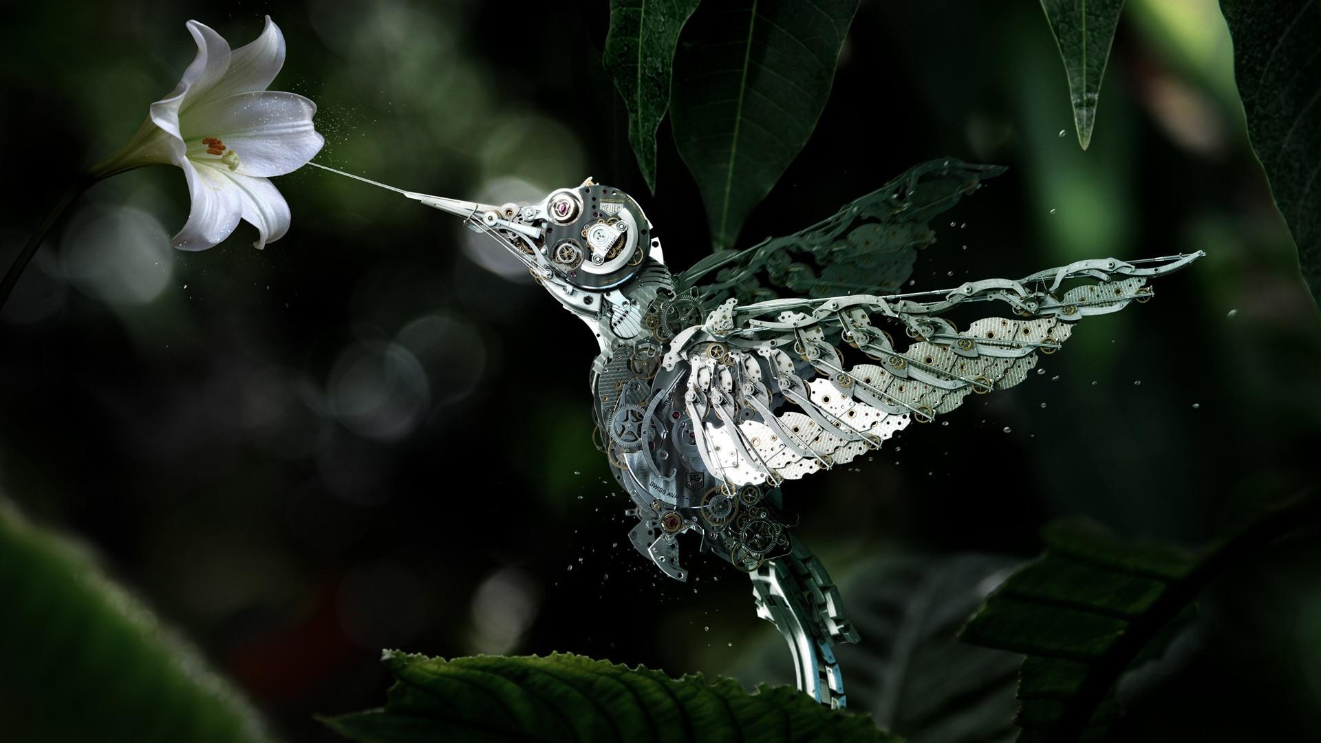 A-beautiful-mechanical-hummingbird-x-wallpaper-wp5203652