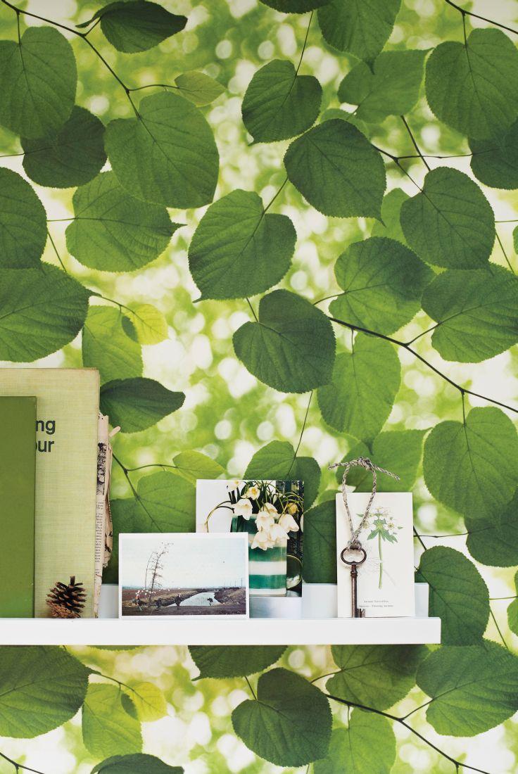 A-beautiful-photographic-image-by-Ella-Doran-wallpaper-wp423333