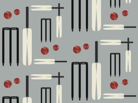 ATA-Design-childrens-wallpaper-Lets-Play-Cricket-Light-Grey-wallpaper-wp4804388