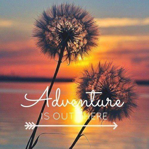 Adventure-quote-Adventure-Fun-Laugh-Play-Quotes-Pinterest-wallpaper-wp5403081