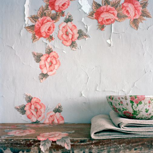 Aliki-Ania-wallpaper-wp5004414