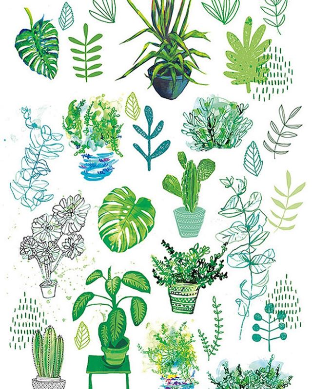 All-My-Plants-archival-art-print-has-just-been-re-listed-in-our-etsy-shop-link-in-bio-Happy-Frid-wallpaper-wp4803275