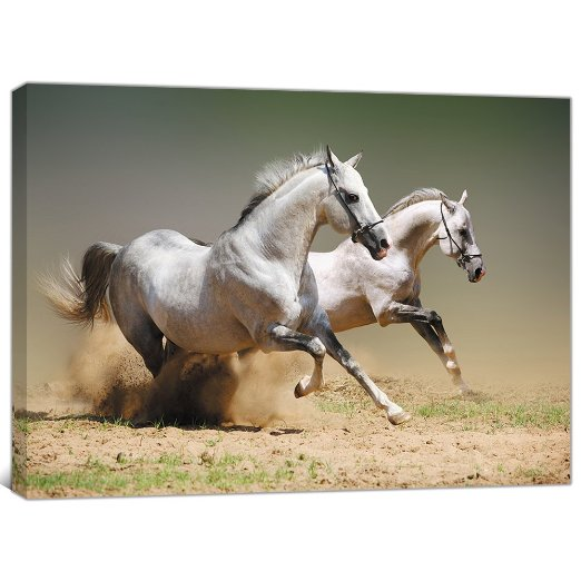Amazon-com-Printed-Posters-and-Prints-Wall-Pictures-for-Living-Room-Running-Horses-Painting-on-Canv-wallpaper-wp3602419