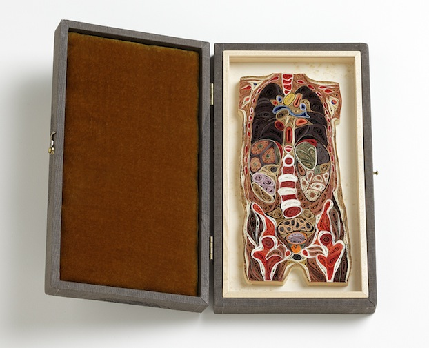 Anatomical-Cross-Sections-Made-from-quilling-Paper-are-Cool-and-Creepy-DNews-wallpaper-wp423631