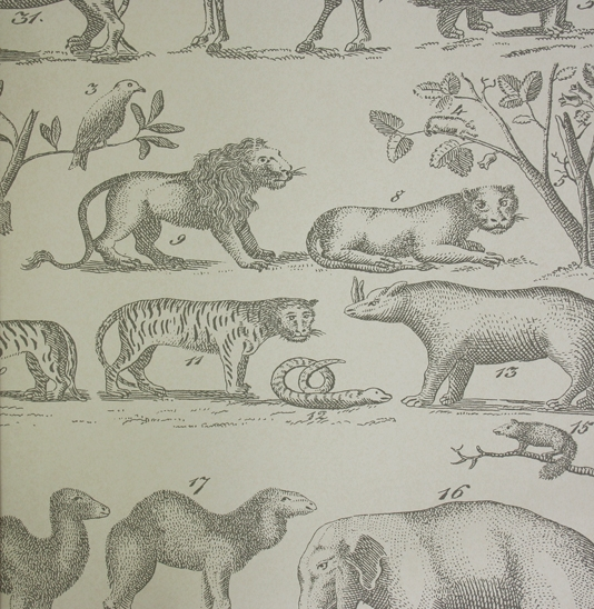 Ark-A-vintage-hand-drawn-style-wallpaper-wp5004771