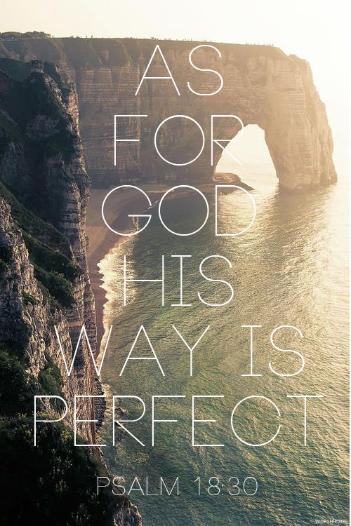As-for-God-His-way-is-perfect-The-Lord's-word-is-flawless-He-shields-all-who-take-refuge-in-Him-wallpaper-wp6002099