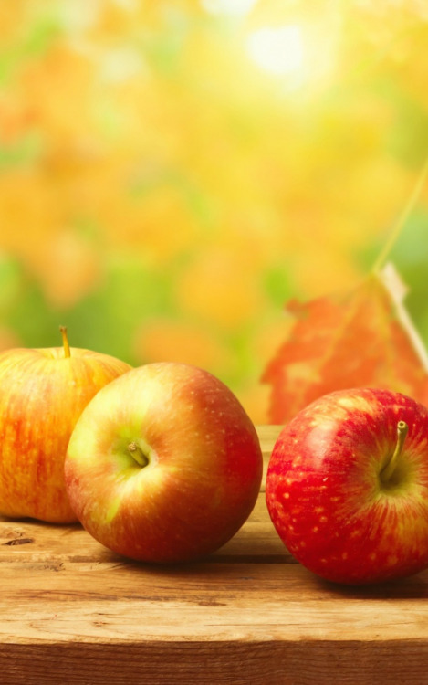 Autumn-Apples-Wood-Table-Android-Autumn-Apples-Wood-wallpaper-wp4003128