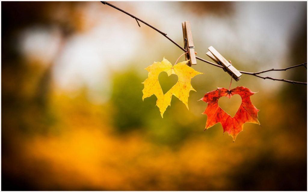 Autumn-Love-Heart-autumn-love-heart-1080p-autumn-love-heart-desktop-wallpaper-wp3402709