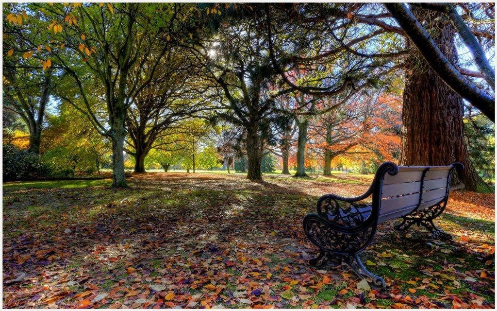 Autumn-Park-Bench-Landscape-autumn-park-bench-landscape-1080p-autumn-park-ben-wallpaper-wp3402712