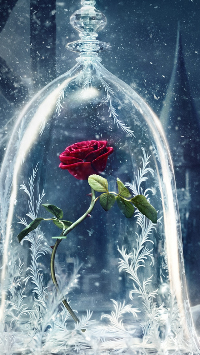 Beauty-And-The-Beast-Castle-Icy-Bell-Rose-Snowflake-iPhone-s-wallpaper-wp424013