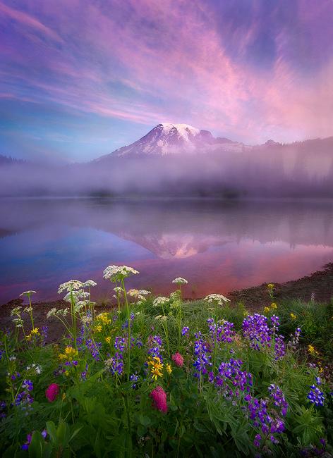 Beauty-Mt-Rainier-Beautiful-landscape-photography-nature-images-wallpaper-wp4405000