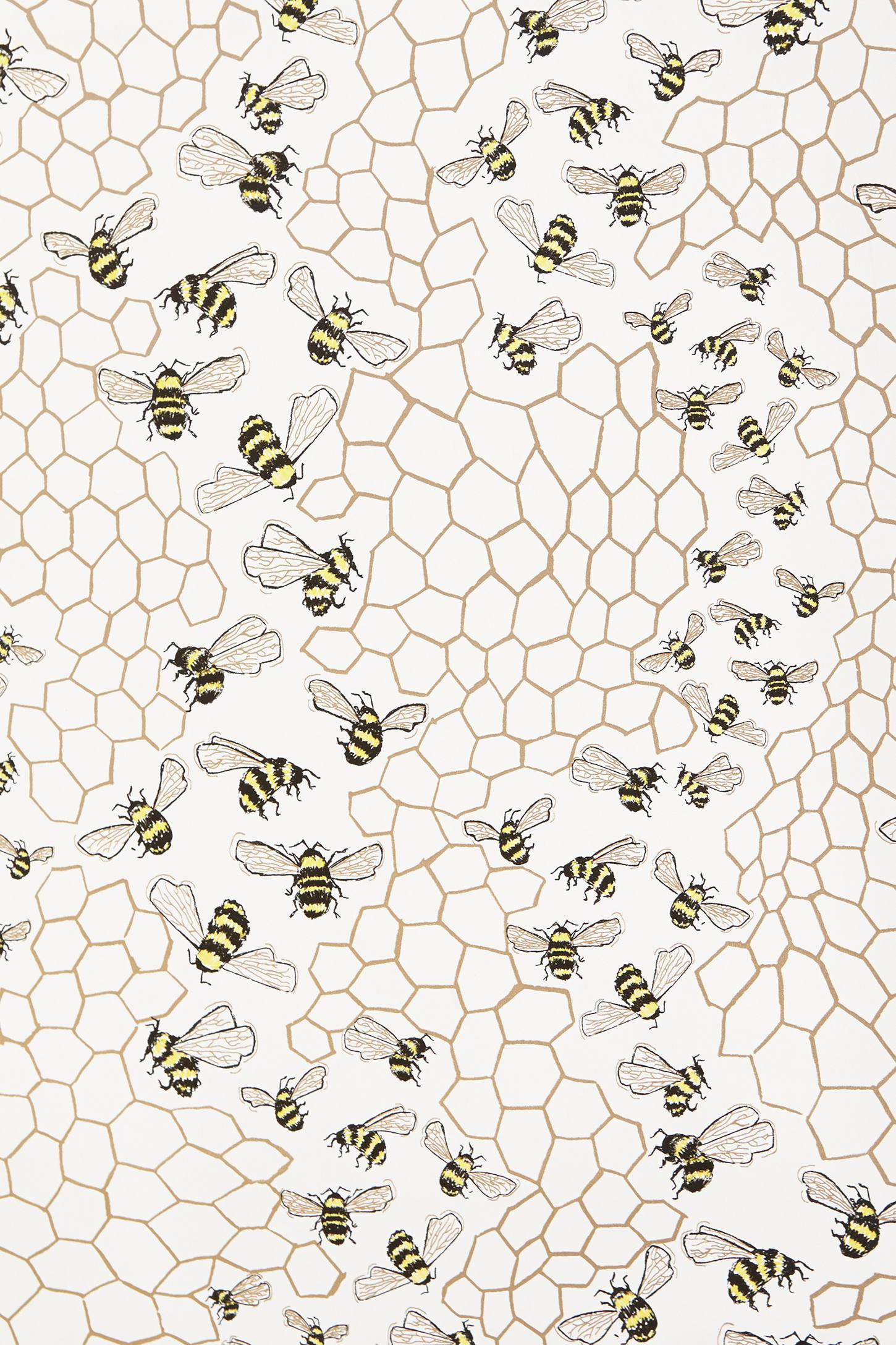 Bee-Colony-anthropologie-com-Apiary-Supplies-Beekeeping-Supplies-Honey-Supplie-wallpaper-wp5403647