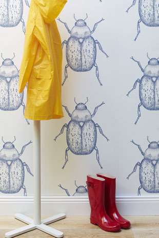 Beetle-in-Chambray-wallpaper-wp5005183