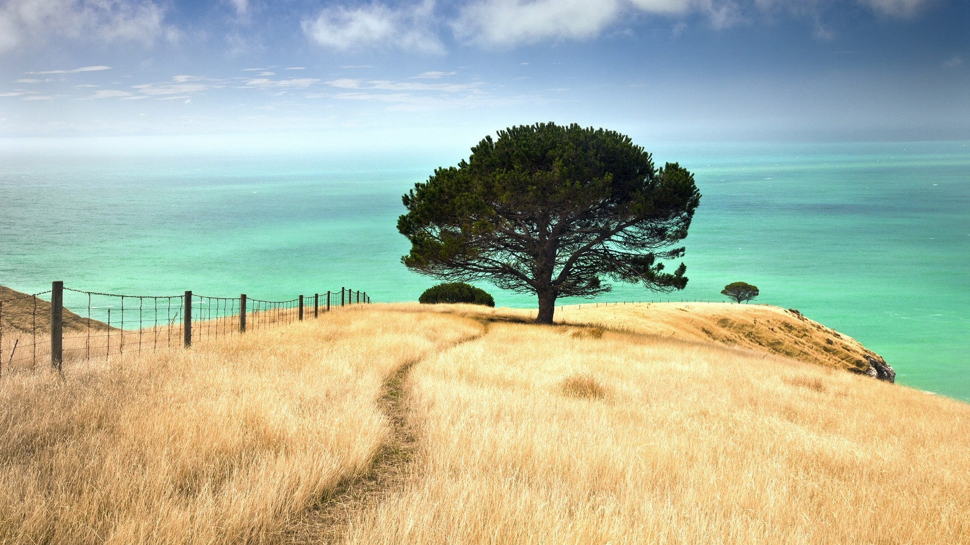 Best-background-images-new-zealand-New-Zealand-Best-intended-for-Backgroun-wallpaper-wp3403084
