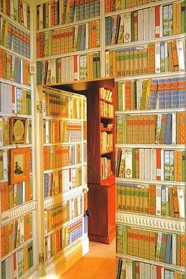Bibliotheque-by-Brunschwig-fils-wallpaper-wp5204637