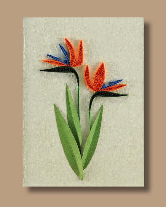 Bird-of-Paradise-Flower-wallpaper-wp4003557