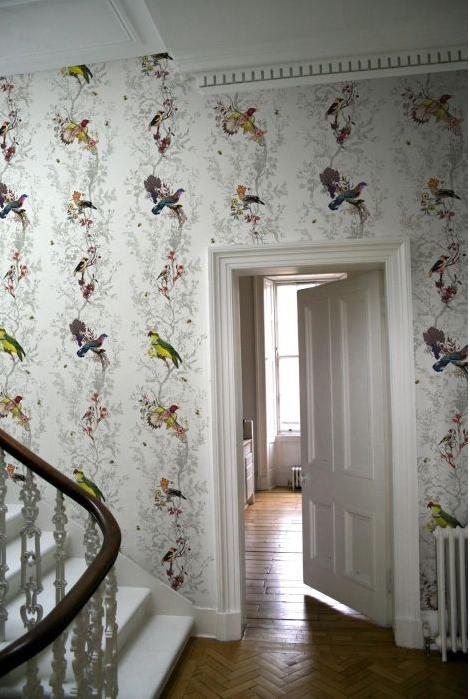 Birds-n-Bees-£-Per-Roll-Timourous-Beasties-wallpaper-wp300141