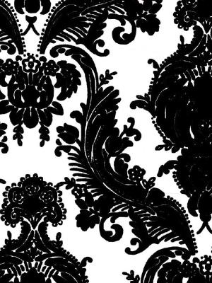 Black-Flock-Damask-on-White-Background-wallpaper-wp3003739