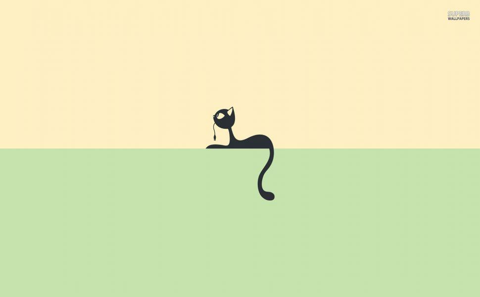 Black-cat-on-a-shelf-HD-wallpaper-wp3403285