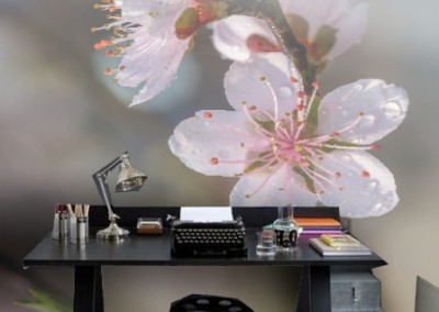 Blossom-Smart-Art-study-wallpaper-wp5804100
