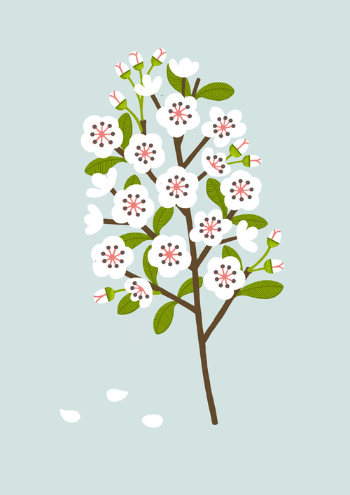 Blossom-by-watersounds-wallpaper-wp5004026