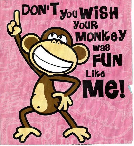 Bobby-Jack-DONT-YOU-WISH-YOUR-MONKEY-WAS-FUN-LIKE-ME-wallpaper-wp5005391