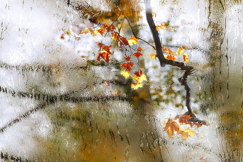 Borrar-el-cristal-wallpaper-wp3003863