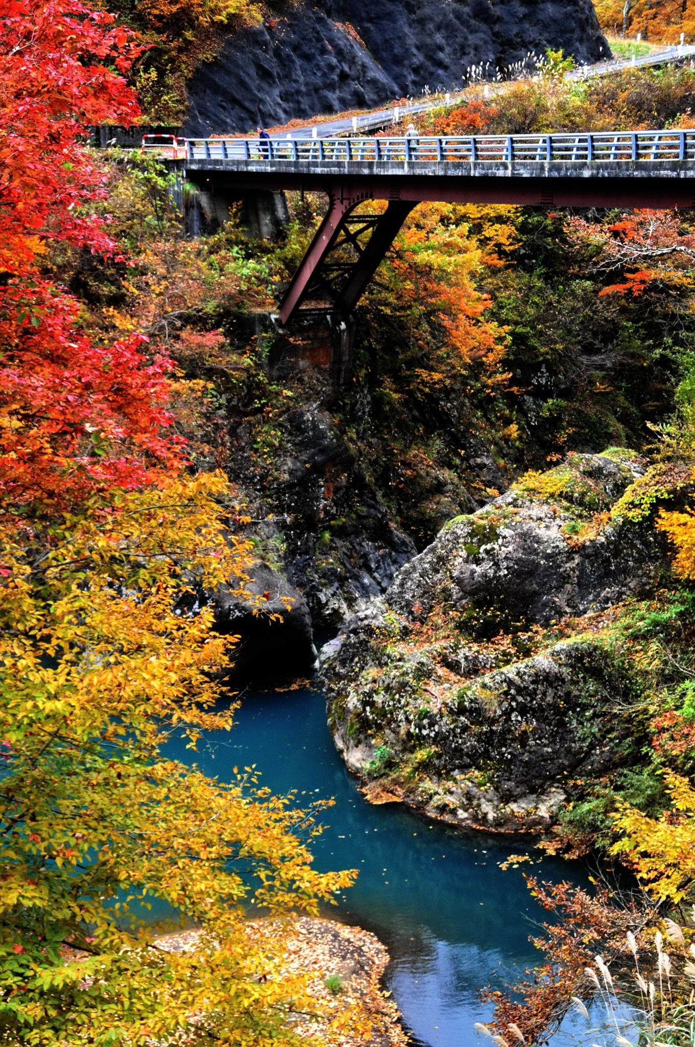 Bridge-in-Autumn-by-KEN-OHSAWA-on-px-wallpaper-wp3401712