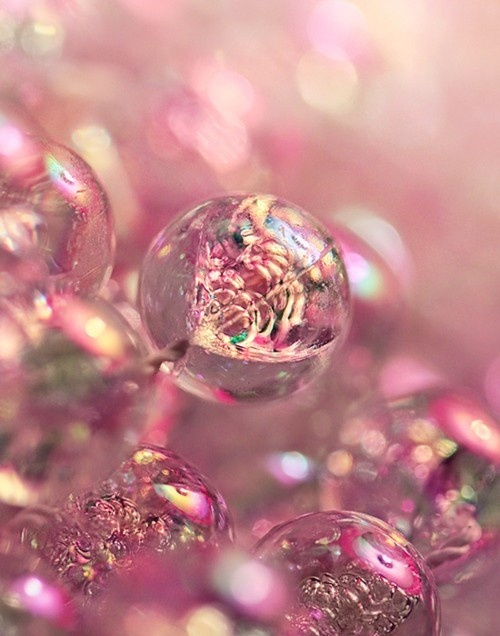 Bubbles-wallpaper-wp440824
