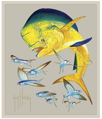 Bull-Dolphin-wallpaper-wp5403874