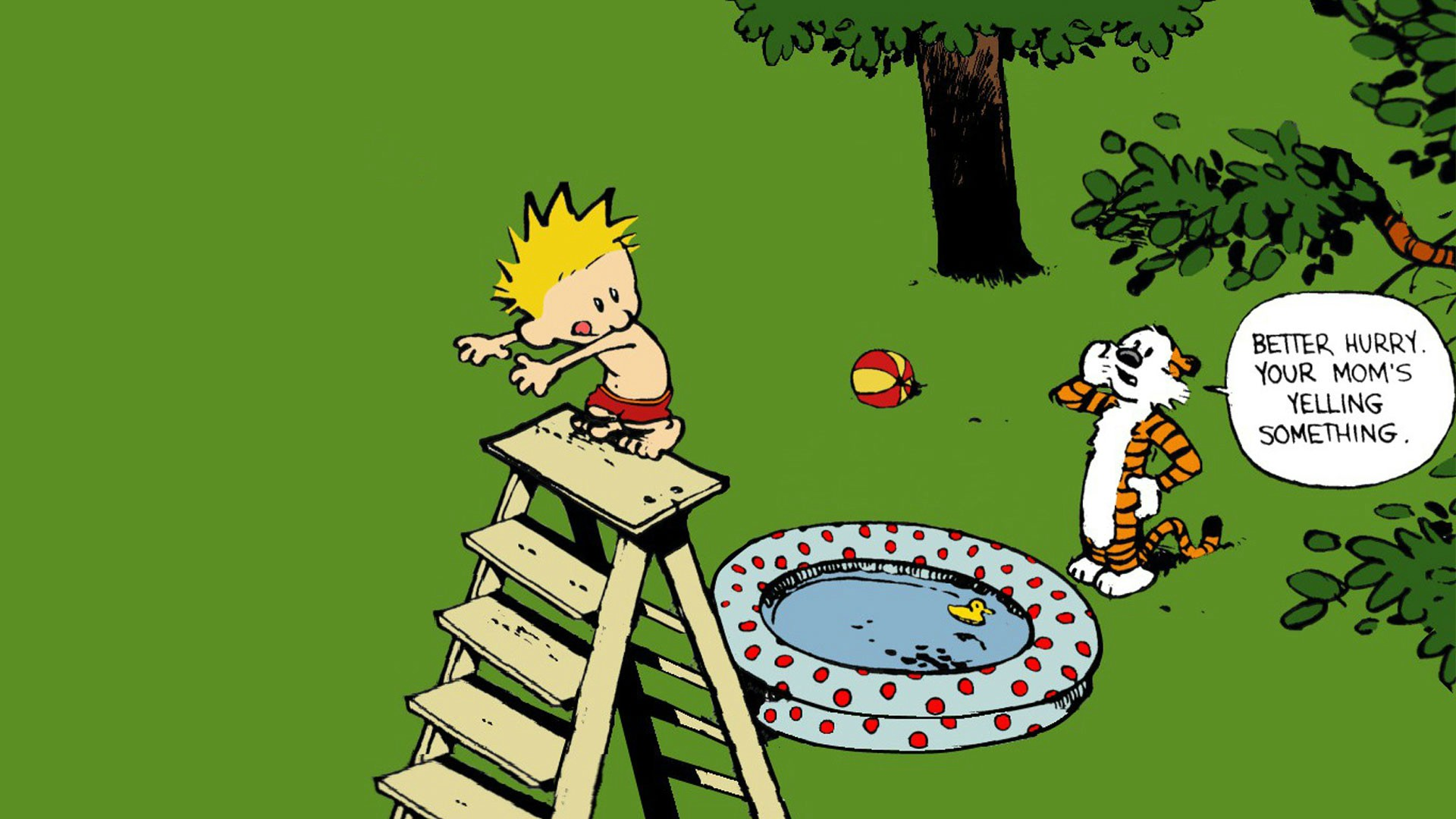 Calvin-and-Hobbes-by-Bill-Watterson-wallpaper-wp3403690