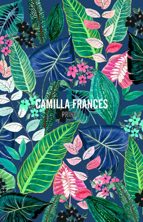 Camilla-Frances-Prints-wallpaper-wp4805066