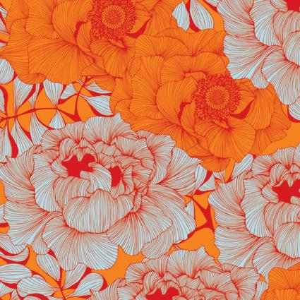 Camilla-Meijer-Rose-Orange-wallpaper-wp5804387