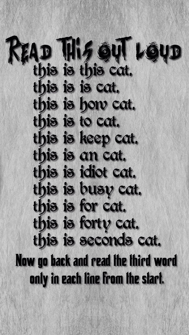Cats-are-so-cute-and-fun-to-play-with-I-also-love-to-see-tell-somebody-a-joke-and-waste-there-time-a-wallpaper-wp5205052