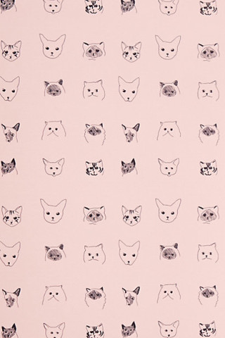Cats-wallpaper-wp424404