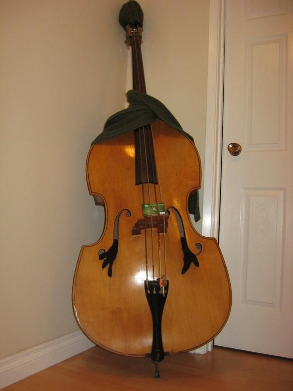 Clarence-double-bass-for-quartet-from-the-s-He-was-a-little-chilly-in-the-corner-wallpaper-wp5205265