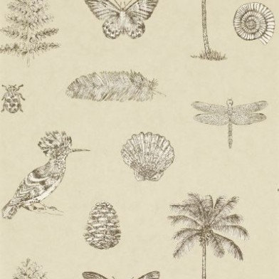 Cocos-Sanderson-A-motif-design-featuring-items-which-may-have-been-wallpaper-wp5404169