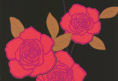 Cole-Son-Paper-Roses-Product-code-Click-for-further-details-and-ordering-wallpaper-wp3004467