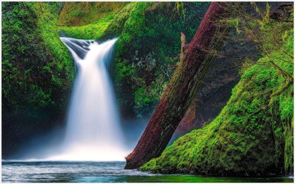 Columbia-River-Gorge-Oregon-USA-columbia-river-gorge-oregon-usa-1080p-columbi-wallpaper-wp3404061