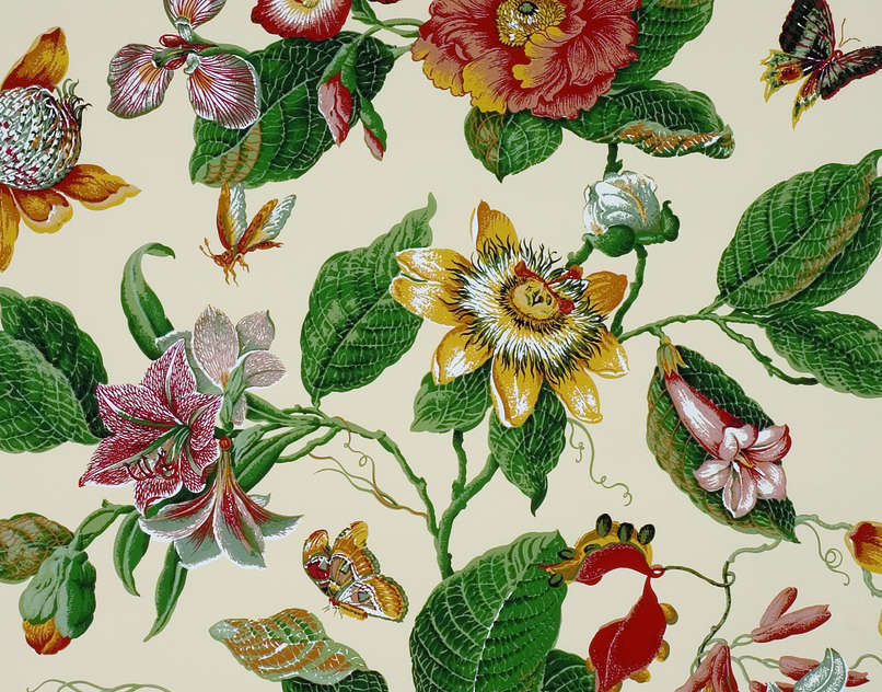 Composition-apier-Odalys-W-Pierre-Frey-Colour-Red-green-Style-Botanical-Type-Floral-wallpaper-wp5205354