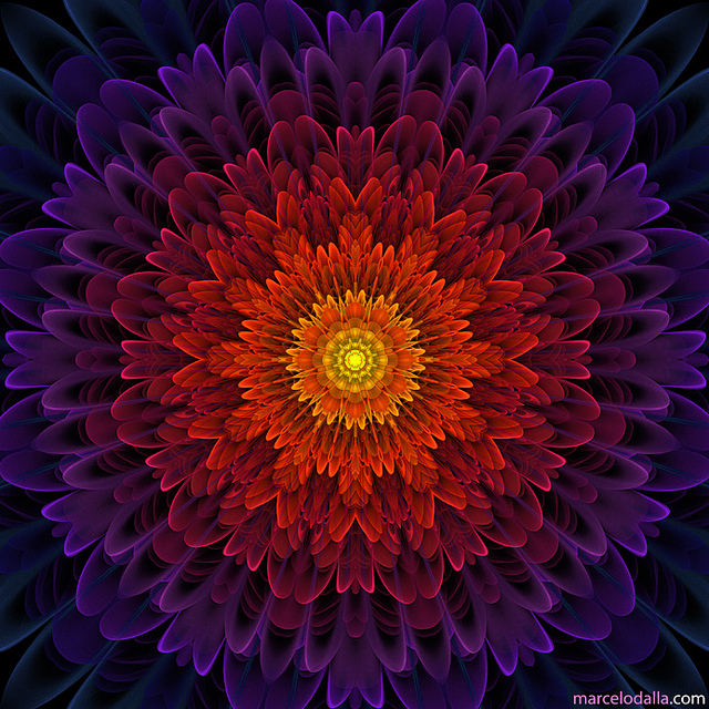 Cosmic-Flower-by-Marcelo-Dalla-wallpaper-wp5404255
