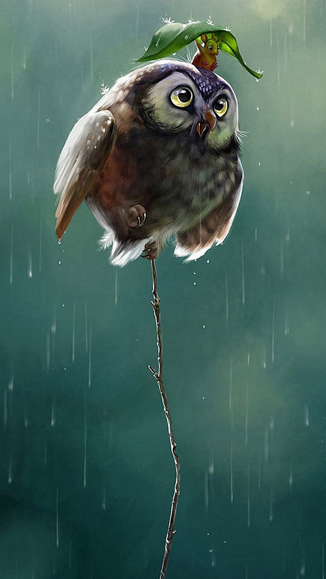 Cute-Owl-Flying-High-Rainy-Day-Covering-Leaf-iPhone-s-wallpaper-wp424780