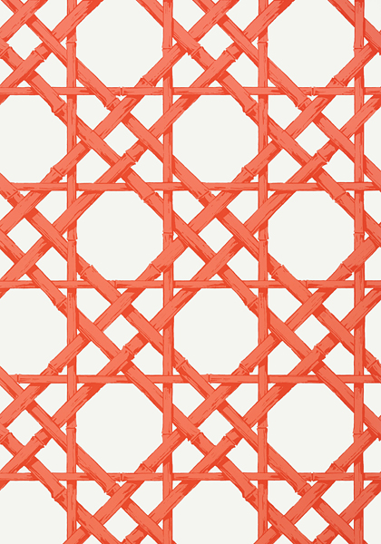 Cyrus-Cane-in-orange-is-available-in-the-Summer-House-Collection-wallpaper-wp5205532
