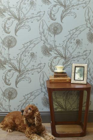 Dandelion-in-Raincloud-wallpaper-wp5006565