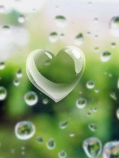 Dew-heart-wallpaper-wp3004941