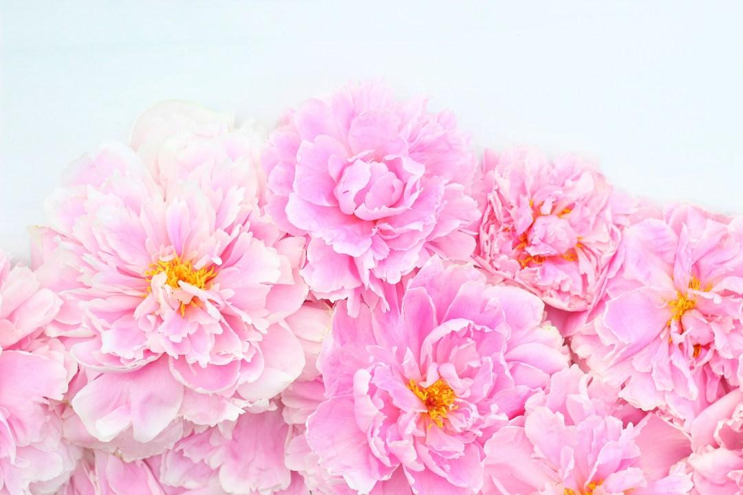 Digital-Blooms-Desktop-July-JustineCelina-com-x-Rebecca-Dawn-Design-wallpaper-wp3004964