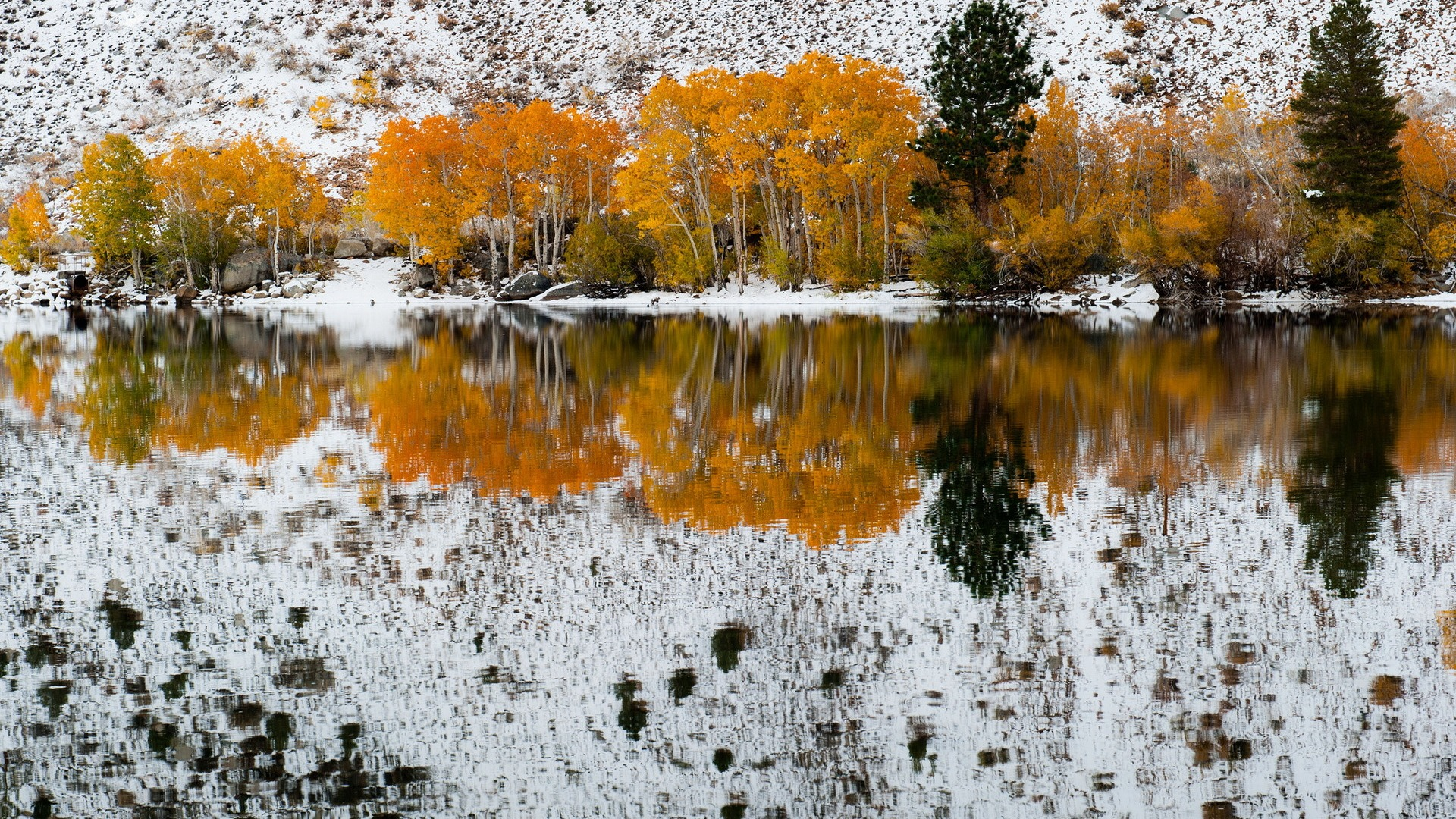 Download-California-refections-Fall-Snow-Bishop-Creek-section-Resolution-1920x-wallpaper-wp3404958