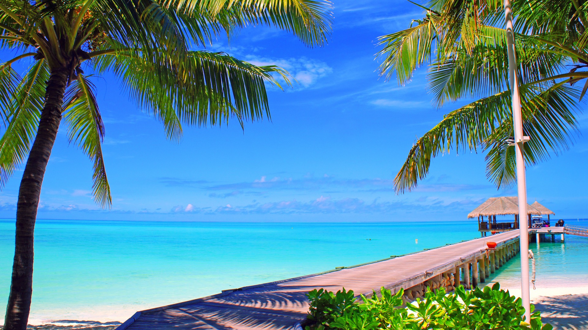Download-sea-the-sky-clouds-palm-trees-the-ocean-island-horizon-the-Maldives-the-b-wallpaper-wp3404981