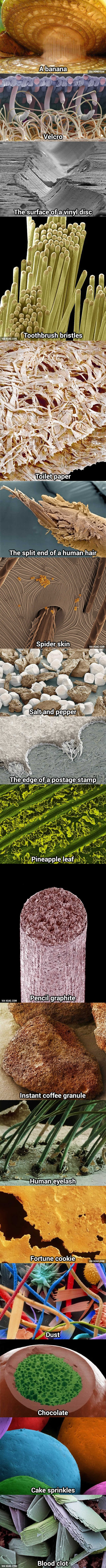 Everyday-Things-Made-Awesome-Under-A-Microscope-wallpaper-wp340698